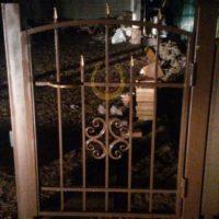 Кованая дверь, калитка
